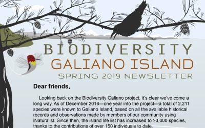 Spring 2019 Newsletter